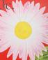 Сумка из кожи с цветочным узором на плечевом ремне Paul Smith  –  Деталь