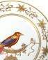 Тарелка Richard Ginori 1735  –  Деталь